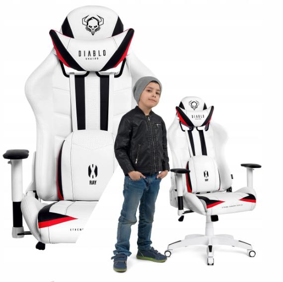 Кресло геймерское игровое компьютерное DIABLO X-RAY