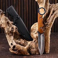 Нож грибника 25см, рукоять с кольцом