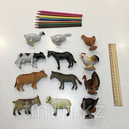 Набор из 12 резиновых домашних животных, фото 2