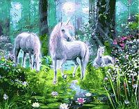 "Картина по номерам ""Единороги на поляне в лесу"" 40х50 см"