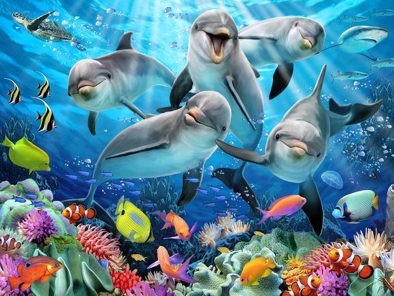 Prime 3D: Пазл Super 3D «Дельфиний восторг», 63 детал. - фото 3