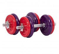 Гантели HomeSport 12 кг - пара (общий вес 24 кг)