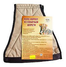Пояс - корсет из собачьей шерсти XL (48-52 размер)