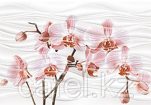 Кафель   Плитка настенная 28х40 Орхидея   Orhideya вставка D