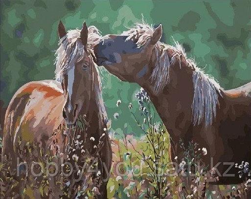 """Картина по номерам  """"Лошади среди трав"""" 40х50 см"""