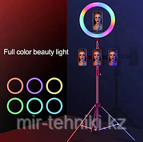 Кольцевая лампа 33см RGB (Разноцветная) со штативом до 210см