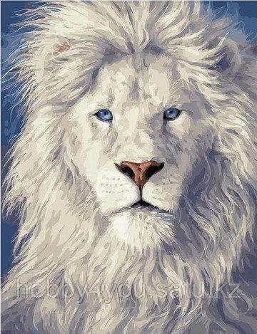 """Картина по номерам  """"Белый лев""""  40х50 см"""