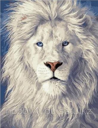 "Картина по номерам  ""Белый лев""  40х50 см, фото 2"