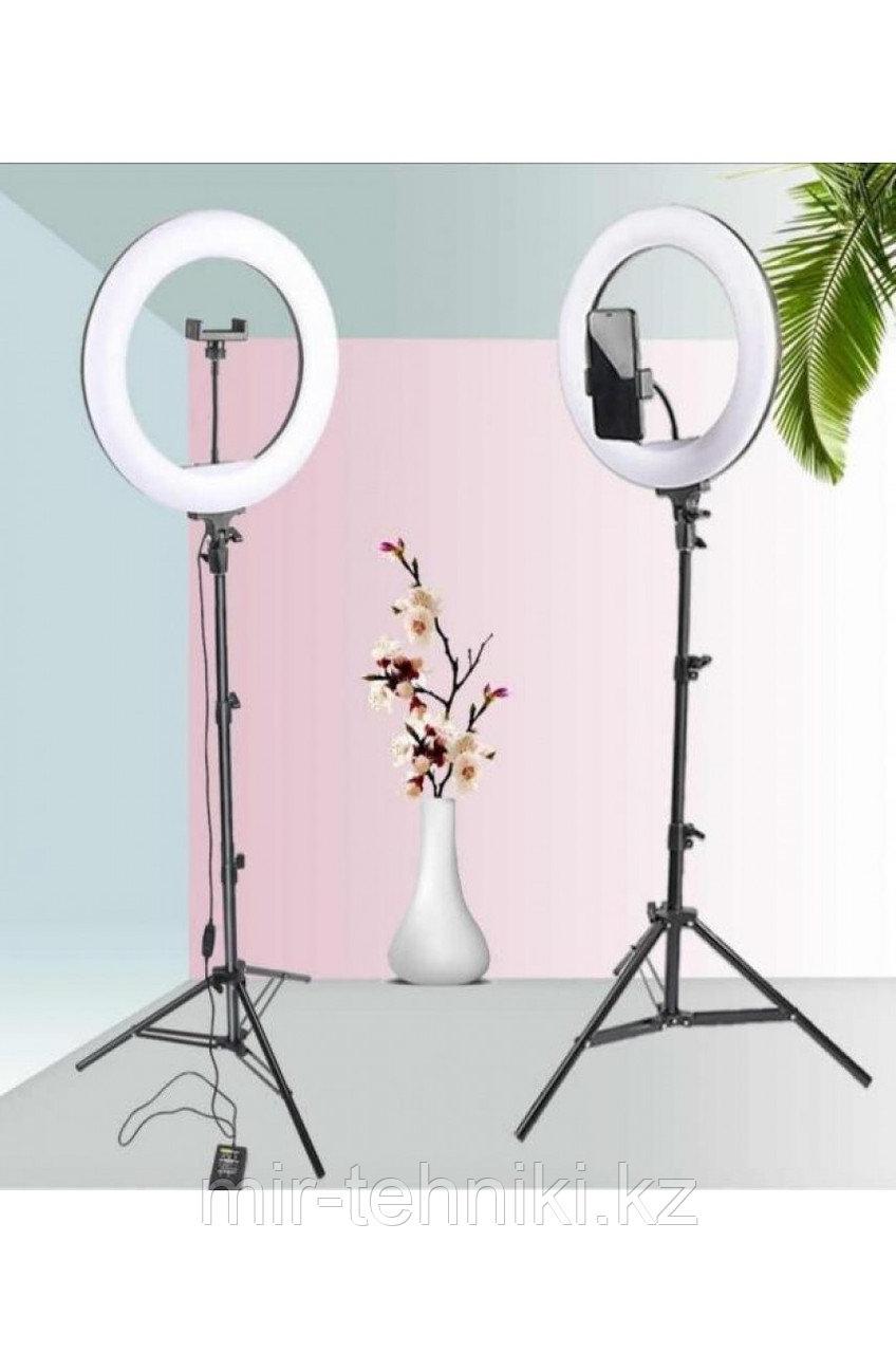 Кольцевая лампа 32см (Трехцветный) со штативом до 210см
