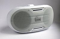 Настенная акустическая система Ridial FE-530TA динамик настенный