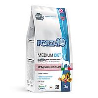 Forza10 Medium Diet 1 кг | на вес | Форца10 диетический корм для собак средних пород с ягненком