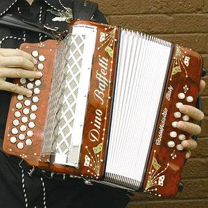 аккордеоны, баяны, гармони