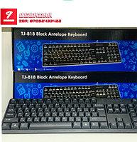 Проводная USB клавиатура Black Antelope Keyboard TJ-818 (TJ-818)