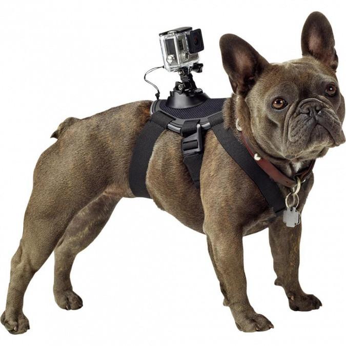Крепление-упряжка для собак GoPro ADOGM-001