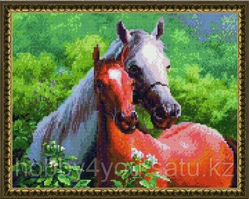 """Алмазная мозаика на подрамнике """"Пара лошадей"""" 40х50 см на деревянном подрамнике, фото 2"""