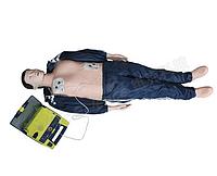 Манекен BLS (сердечно-легочной реанимации и AED симулятор)