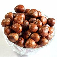 Фундук (лесной орех)