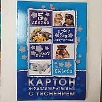 Набор картона 5л А4 5цв металлизированный в папке -Пушистые любимцы- Hatber
