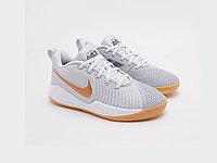 Детские кроссовки Nike Team Hustle Quick 2 / grey