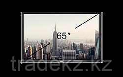 Интерактивная панель Vivitek EK650i
