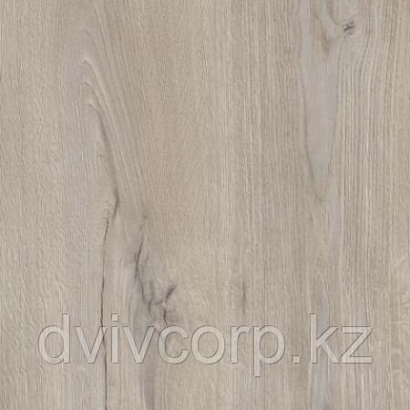 First Step Дуб Каньон Кроностар, 6 мм, 31 кл