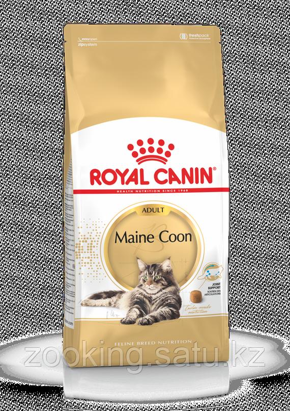 Royal Canin Maine Coon 31, корм для кошек породы Мейн Кун старше 15 месяцев, уп. 4кг - фото 1