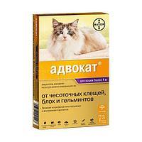 Адвокат капли на холку для кошек от 4 до 8 кг,1 пипетка 0.8 мл.