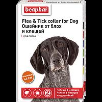 FLC Dog (Diaz Dog) Ошейник от блох и клещей для собак оранжевый, 65 см