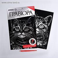 """Гравюра """"Котенок"""" с металлическим эффектом серебра А4"""