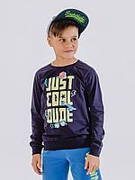 Batik Свитшот (пуловер) для мальчика (01042_BAT)