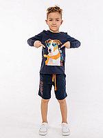 Batik Комплект футболка с длинным рукавом и шорты для мальчика (01014_BAT)