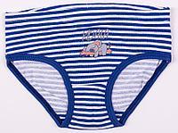 Batik Трусы для девочки (01333_BAT)