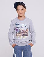 Batik Свитшот для мальчика с длинным рукавом (01624_BAT)