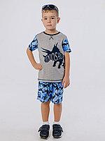 Batik Шорты для мальчика (00861_BAT)