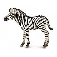 Collecta Фигурка Жеребёнок зебры, 7 см