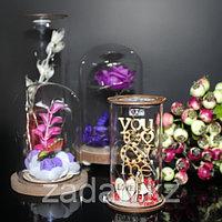 Цветы в колбе с подсветкой, фото 1
