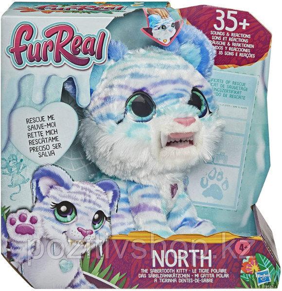 Интерактивный Саблезубый котенок Тигр FurReal Friends Hasbro - фото 3