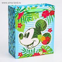"Пакет ламинат вертикальный ""Mickey"", Микки Маус, 23х27х11,5 см"