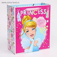 """Пакет ламинат вертикальный """"Princess"""", Принцессы, 23х27х11,5 см"""