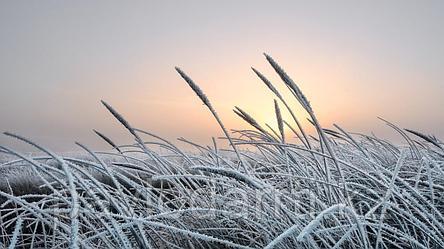 До -26 градусов похолодает в Казахстане!