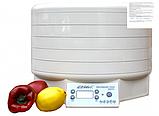 Сушилка дегидратор  для овощей и фруктов Snackmaker EZIDRI FD500, фото 4