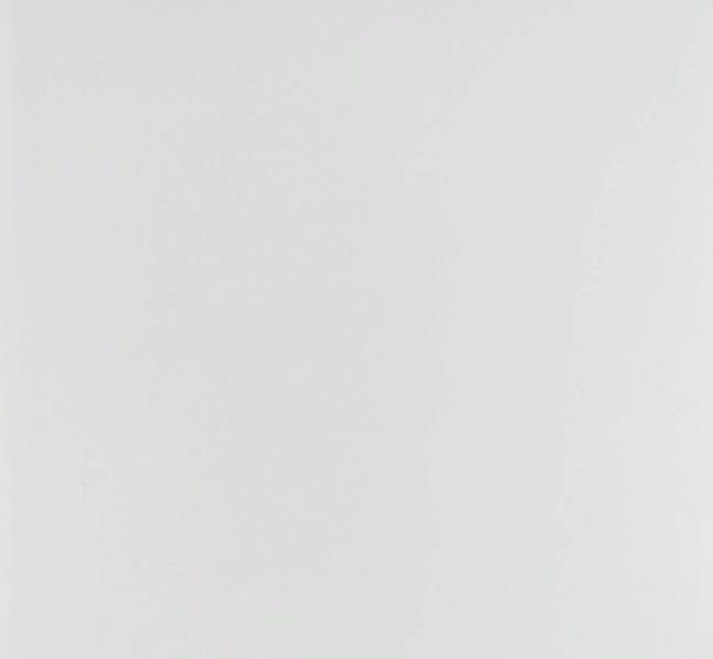 "Стеновая ПВХ панель 2700х250 мм (0,675 м2)  ""Идеал Ламини"" № 001-G (Белый глянцевый)"