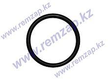 Прокладка резиновая тип RT, крупный профиль, для ТЭНов на резьбе G1 1/4 819992