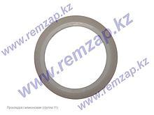 Прокладка силиконовая для водонагревателя Thermex 66162