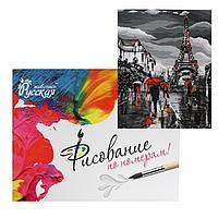 Рисование по номерам «Французский вечер» 40×50 см