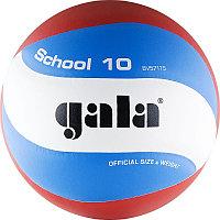 Волейбольный мяч Gala School 10