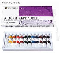Краска акриловая, 12 цветов по 12 мл, BRAUBERG