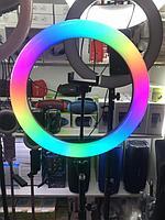 Цветная Кольцевая LED Лампа RGB 33 см (MJ33) +Штатив 210 см Кольцевые LED Лампы