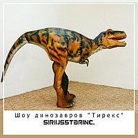 """Шоу динозавров """"Тирекс"""""""