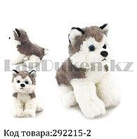 Мягкая игрушка собака Хаски маленькая я с антистрессовой лапкой серая 20 см